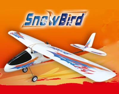 3CH Snow Bird RC Airplane(RTF)